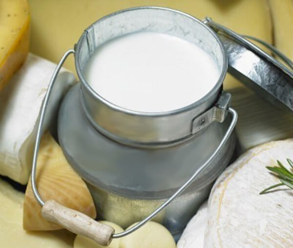 cheese-milk (1)