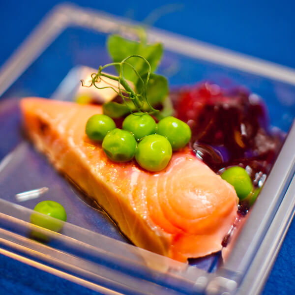 alaska-salmon-3 (1)