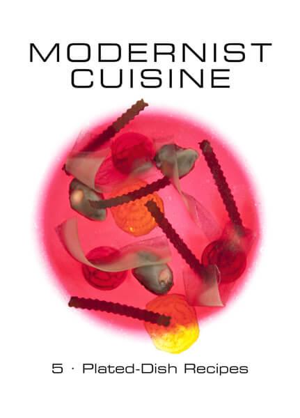 modernist-cuisine-8 (1)
