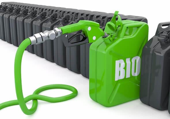biofuels.full (1)