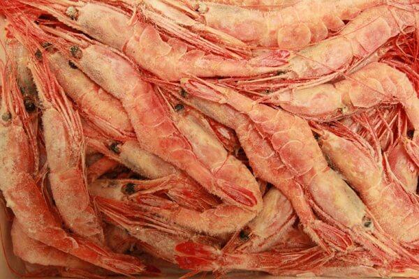 seafoodshop5-full