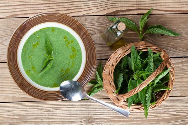 nettle-soup.full (1)
