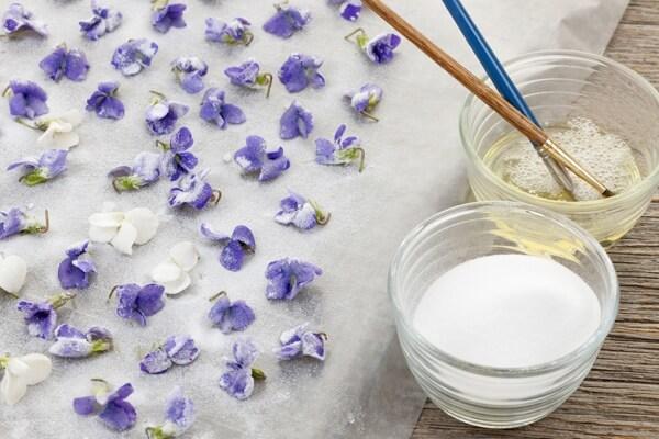 violet-flowers-food.full (1)