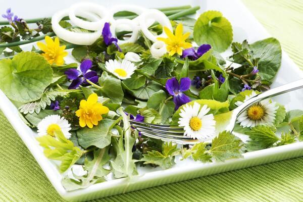 wild-flowers-salad.full (1)