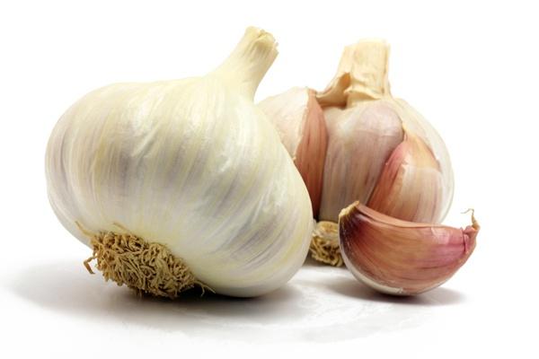 garlic3.full