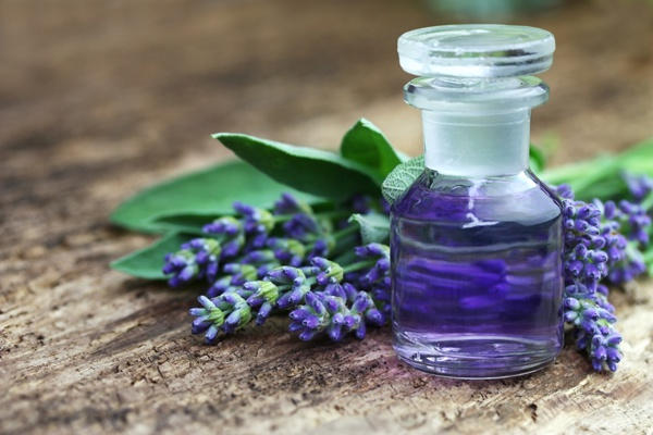 natural-perfume-lavender.full