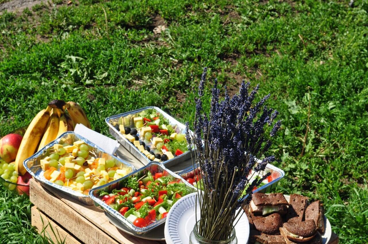 пикник трава 2014