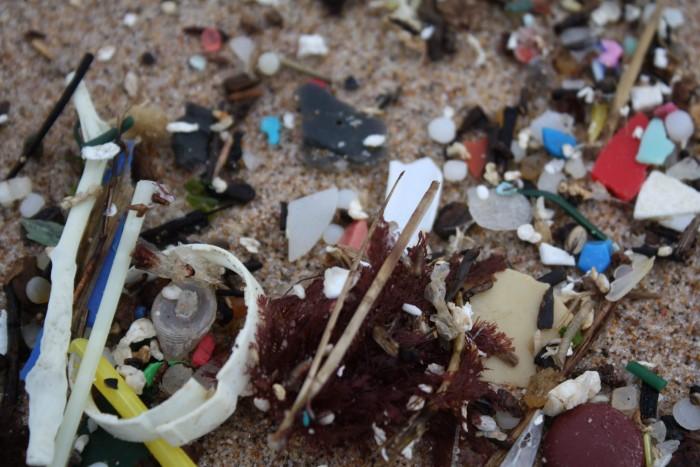 микропластик на берегу