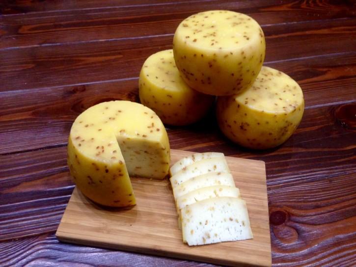 сыр с пажитником