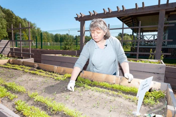 Наталья Иванкевич на огороде