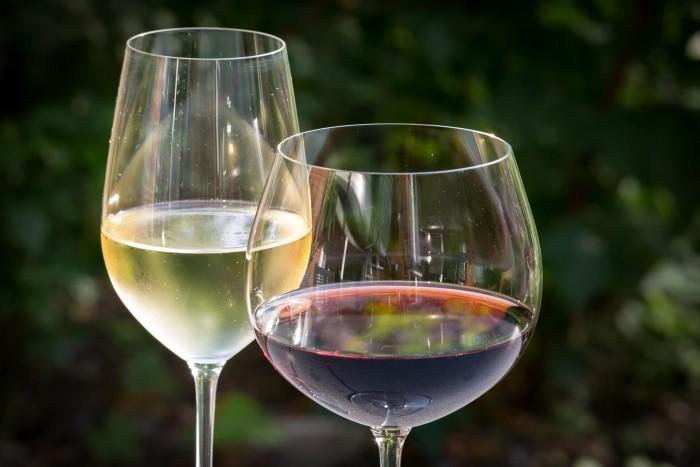 вино 5