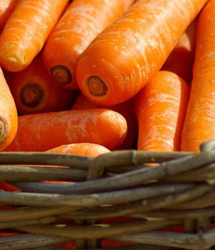 морковь Изображение jacqueline macou с сайта Pixabay