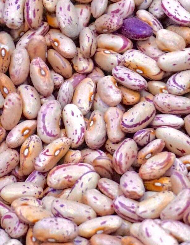 день зернобобовых 10 февраля pexels-digital-buggu