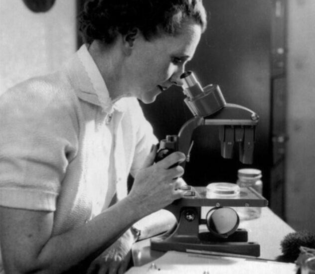 Рэйчел Карсон морской биолог, писательница