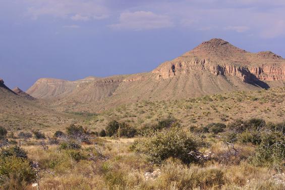 Чиуауа пустыня