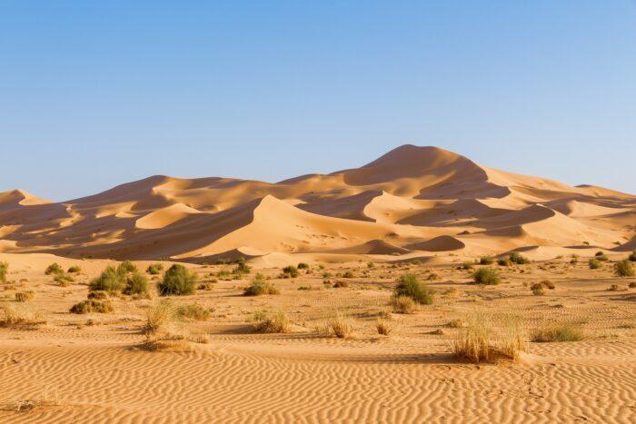 Сахара дюны Изображение Djamel RAMDANI с сайта Pixabay