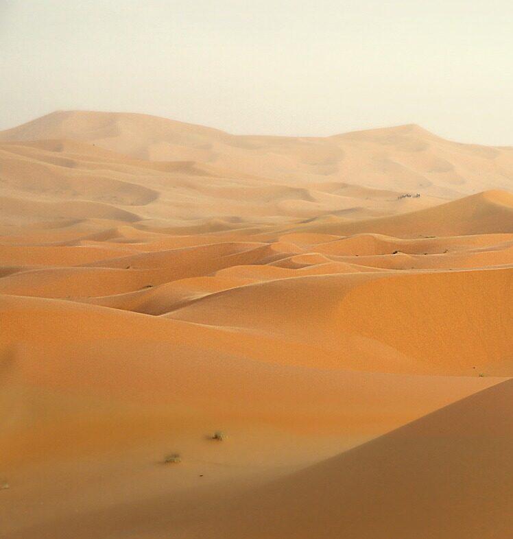 Самые интересные пустыни мира Изображение Greg Montani с сайта Pixabay