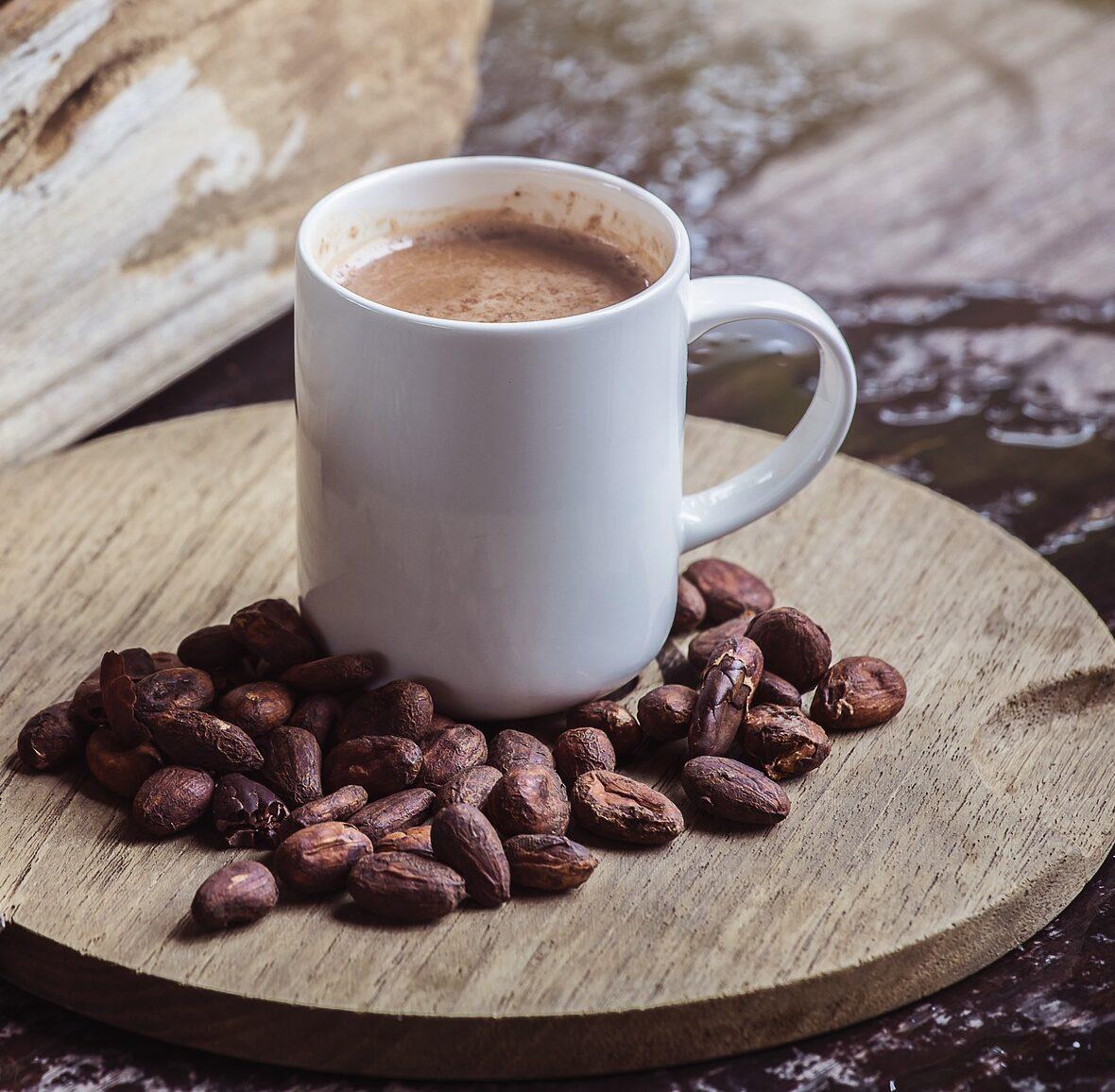 об истории шоколада Изображение Plants World с сайта Pixabay