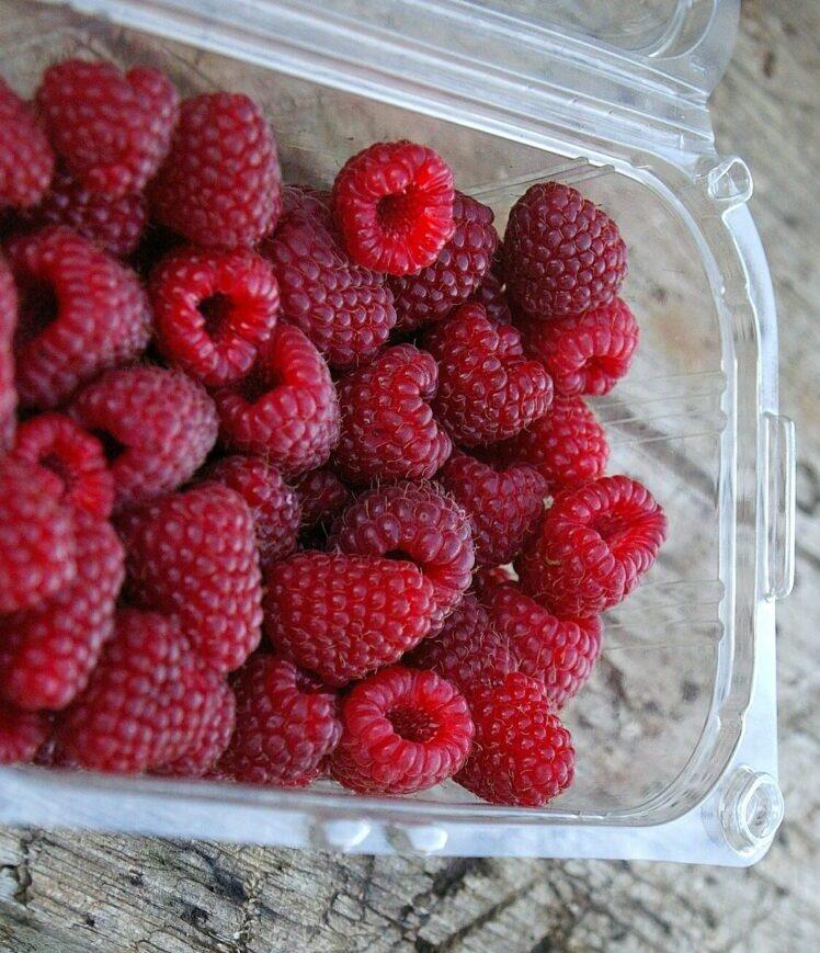 Франция запретит пластиковую упаковку для фруктов и овощей Изображение lentchok с сайта Pixabay