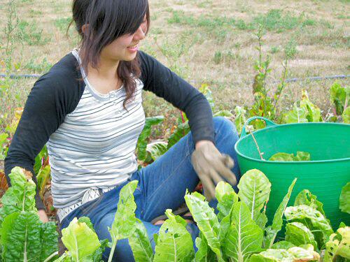 agrotourism (1)