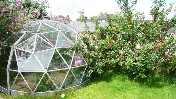 geodesic-dome-1 (1)