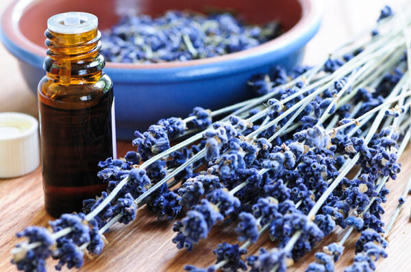 lavender-essential-oil (1)