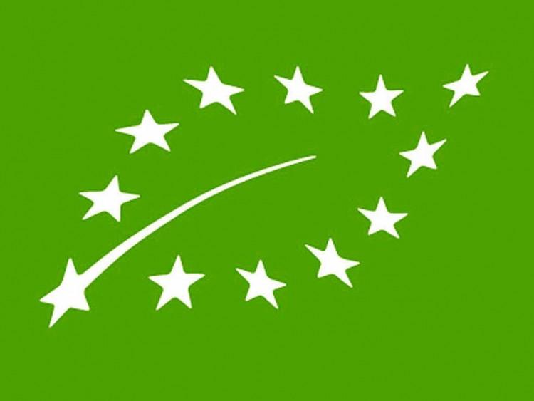 euro-leaf.full (1)