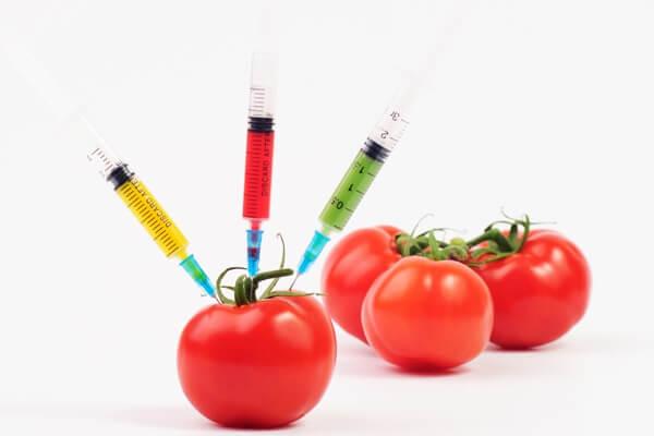 tomato-toxins-full-1