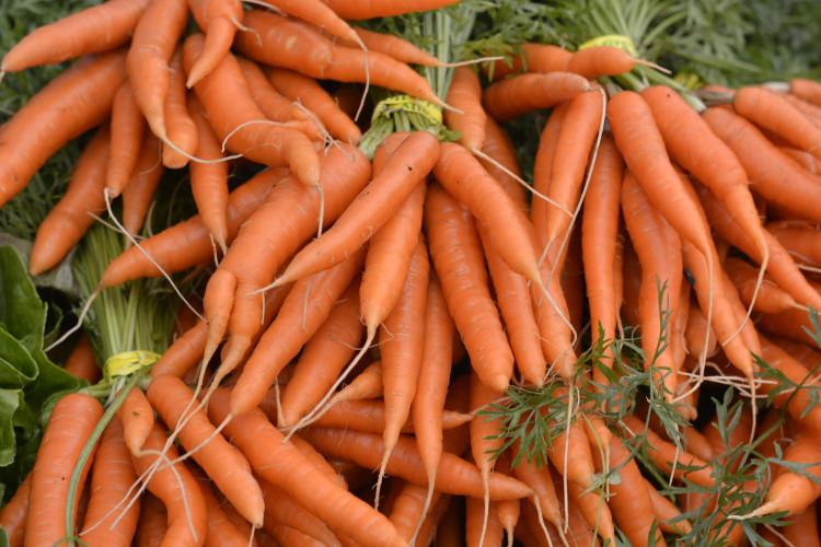 9 продуктов на осень для здоровья кожи 5
