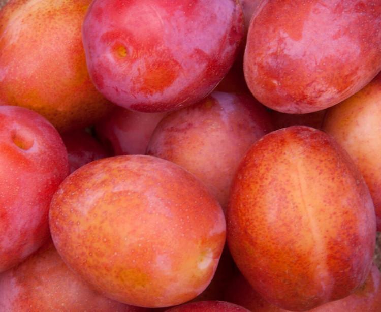 9 продуктов на осень для здоровья кожи 7