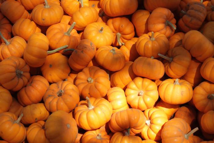 9 продуктов на осень для здоровья кожи 1
