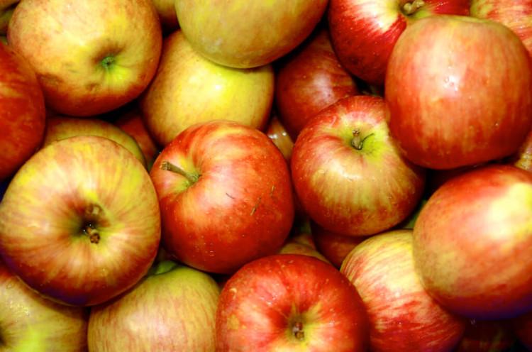 9 продуктов на осень для здоровья кожи 4