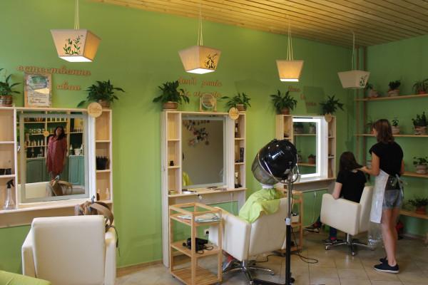 Зеленая студия