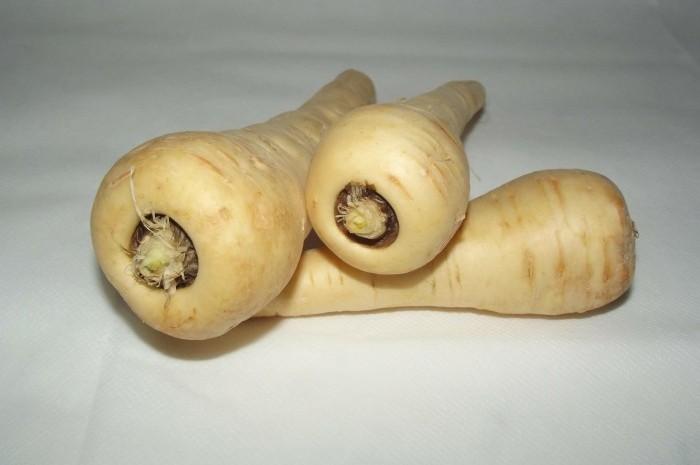 parsnip (1)